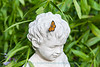 Pearl crescent butterfly on boy statue