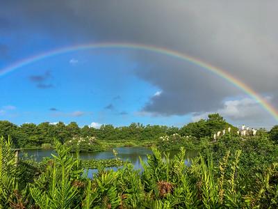 Rainbow over Wakodahatchee
