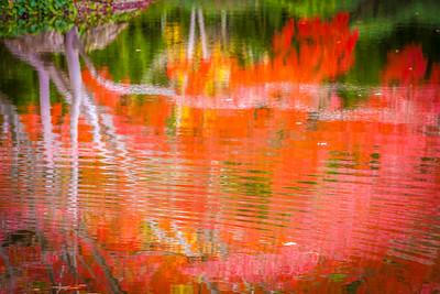 Fall Reflection II