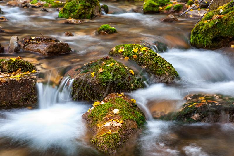 Smithfield Canyon Stream