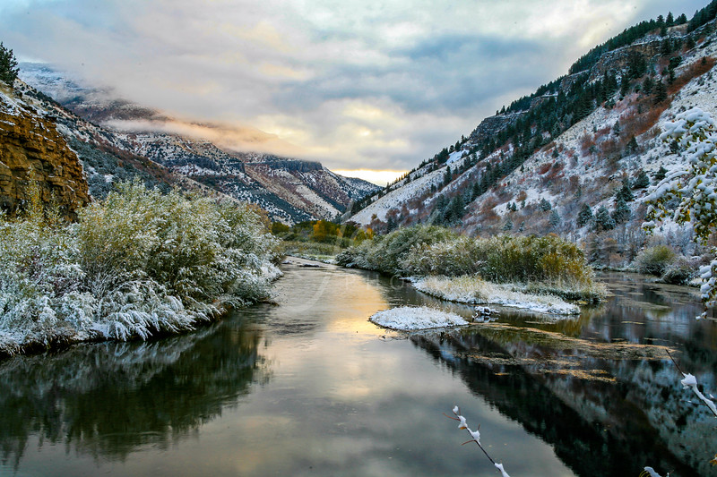 Logan River Morning