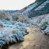 Logan Canyon Fresh Snow