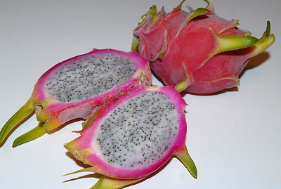 © Joseph Dougherty. All rights reserved.   A pair of frozen ripe Dragon Fruit. The pulp can be scooped out and eaten just like ice cream, or blended into a cocktail or other dessert.   Hylocereus undatus   You, too, can grow this wonderful plant.  Visit  http://www.ecology.org/tropicals to learn more and order a plant of your own.