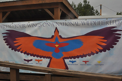 Visitor area at Caddo Lake NWR.  Full size outline of various birds from Humming bird to California Condor.