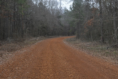 Road to Starr Ranch point