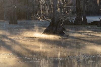Caddo Lake 2020-2