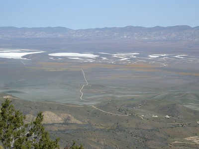 Soda Lake on the Carizzo Plain below. Yellowish swaths are wildflowers; a portion of the access road that we took to get to the trailhead is seen in the middle of the photo.
