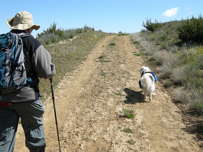 Tom at left, Sheila on right; she was wearing a new doggy pack, lugging her food.