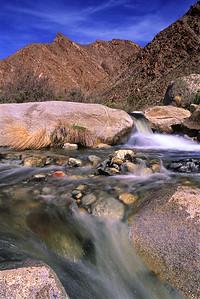 Anza Borrego Desert, Palm Canyon 33_0398