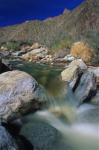 Anza Borrego Desert, Palm Canyon 18_0398