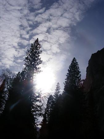 California Febuary 2010 Trip