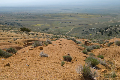 A view looking South onto Tejon Ranch Property near Fish Creel