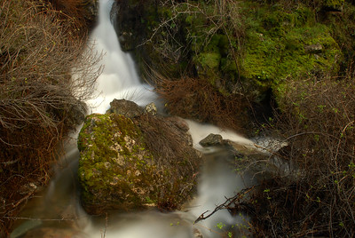 © Joseph Dougherty. All rights reserved.   Donner Creek Falls cascades through the upper portion of Donner Canyon on the north slope of Mt. Diablo.
