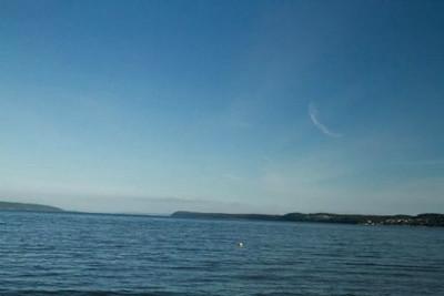 xfs_500x400_s80_Camano Island with Blu 06-18-2014-30