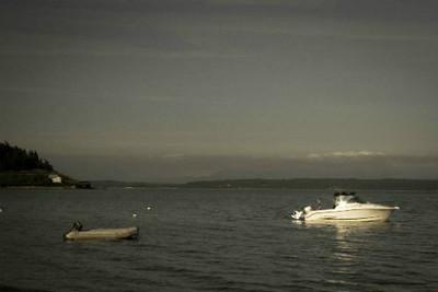 xfs_500x400_s80_Camano Island with Blu 06-18-2014-31