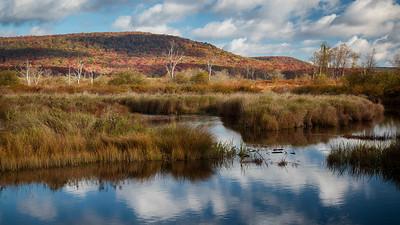 Blackwater River Trail - Oct 5 2014