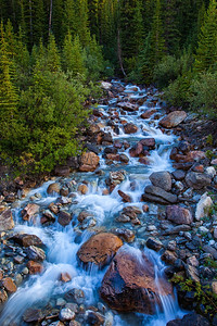 Icefields Parkway Summer Stream