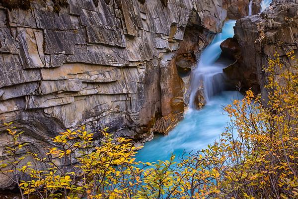 Coleman Creek in Autumn