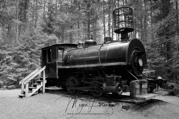 """The Algonquin Logging Museum opened in 1992 and  is located by the park's east gate. A 1.3 kilometres trail features a recreated logging camp, a steam-powered amphibious tug called an """"alligator"""", logging equipment and interpretive panels about logging industry activities in the park."""