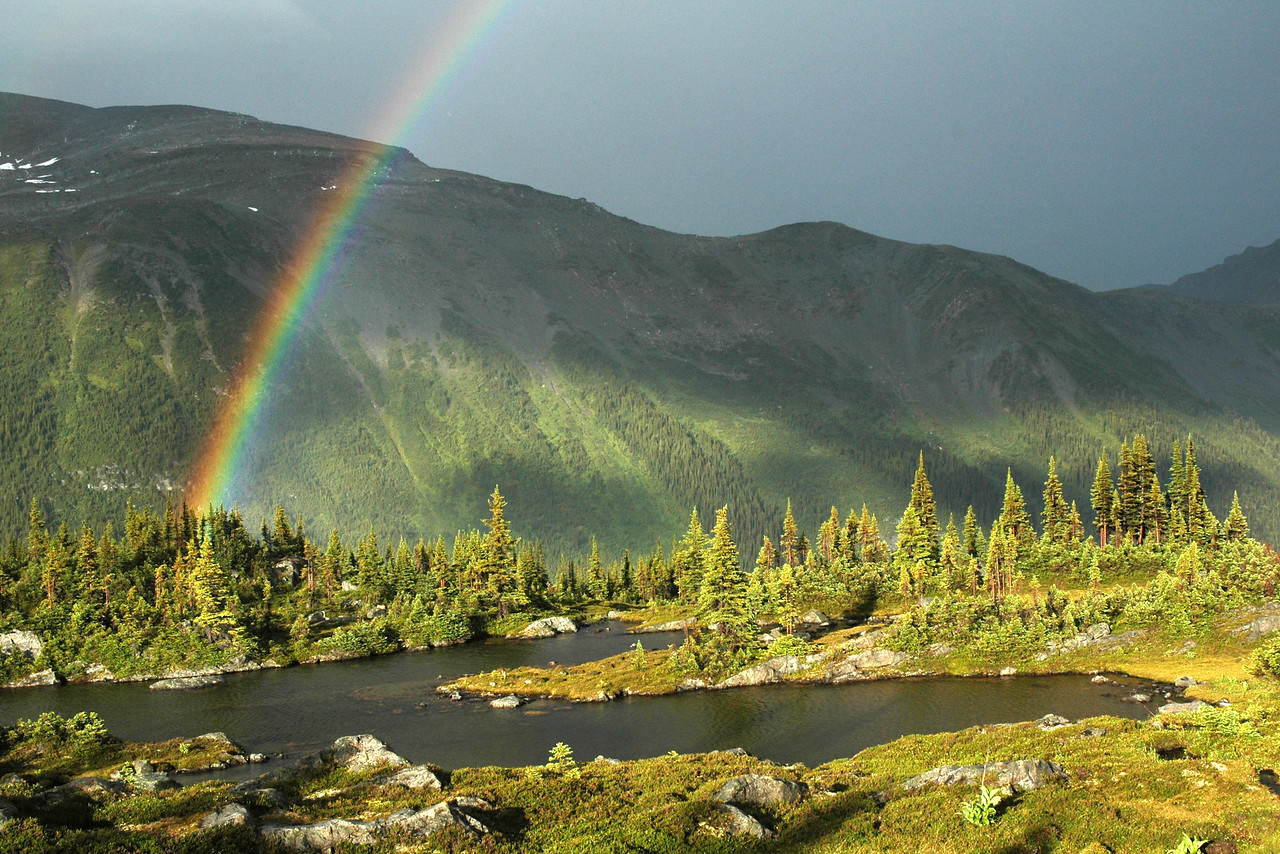 Rainbow in the Caribou Mountains, British Columbia