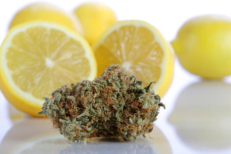 STB BR4A0994 Lemon Sour Diesel  copy