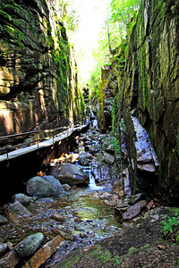 Franconia Notch State Park Gorge, NH #3602