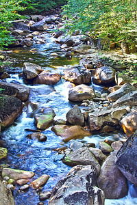 Franconia Notch State Park, NH #3798