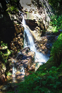 Franconia Notch State Park Gorge Waterfall, NH #3637