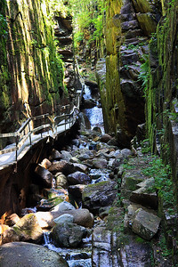 Franconia Notch State Park Gorge, NH #3605