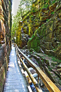 Franconia Notch State Park Gorge, NH #3608