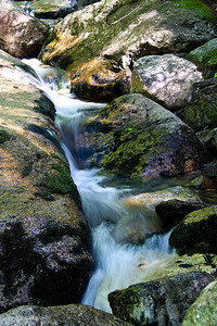 Franconia Notch State Park, NH #3534