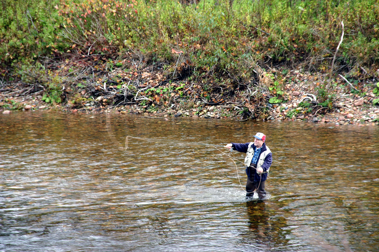 Fishing<br /> <br /> Once a day it should be me who is standing in a creek and fishing.