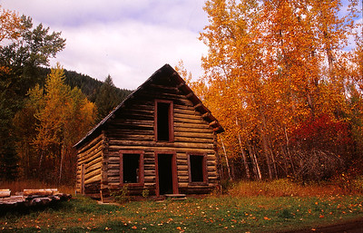 Old Cabin at Likely