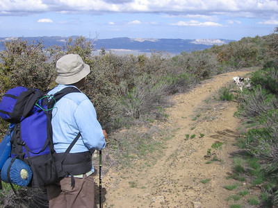 Along the trail; it's an old jeep road atop the ridge, with views down both sides.