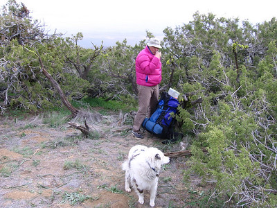 Next morning, preparing to take to the trail again. Overnight temps around 37 degrees inside my tent, so a bit chilly. There was also a brief bit of rain just around sunrise. Sheila was ready to go!