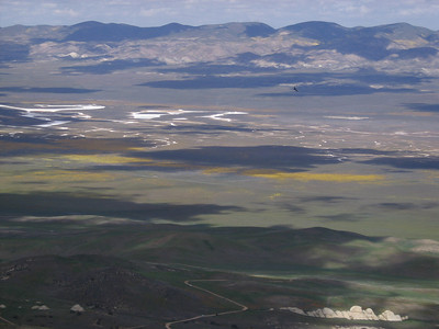 The flowered plain below, with the approach road in the foreground and a hawk soaring in the middle distance.