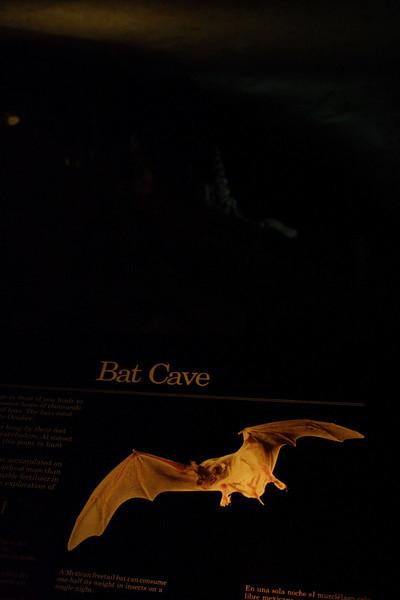 Natural Cave Entrance Route - Bat Cave