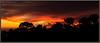 Carmel Sunset 8831