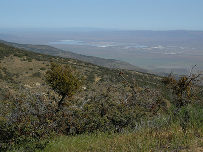Looking back north to Soda Lake. Usually dry, the rains this season meant the lake had quite a lot of water.