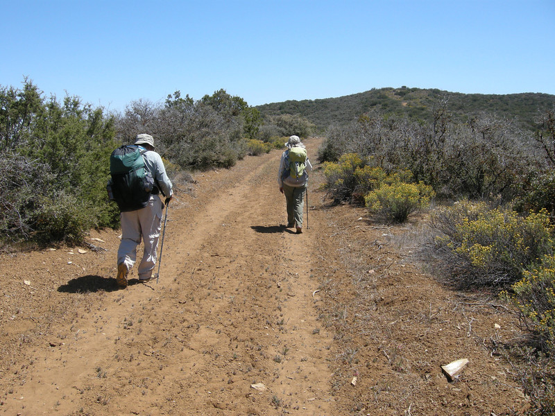 The trail follows this ridge-top for many miles, gaining and losing elevation as you progress to the southeast.