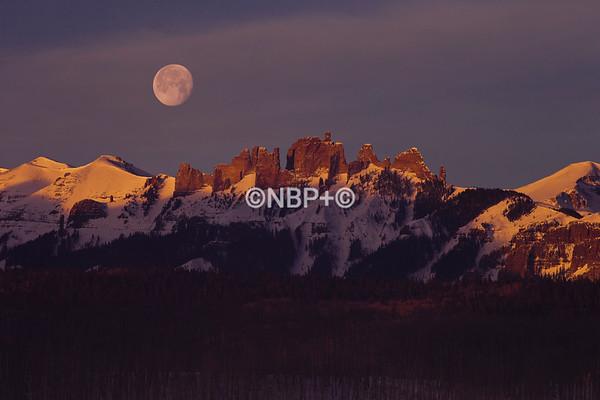 _NB58837