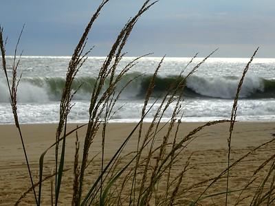Catch a Wave Rehoboth Beach DE Sept 5 2016