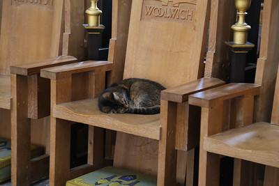Doorkins Magnificat at Southwark Cathedral