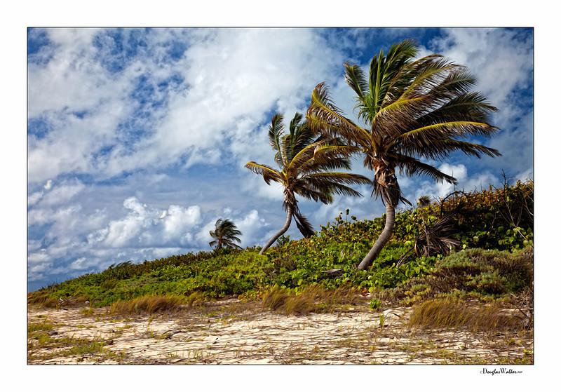 East side - Grand Cayman