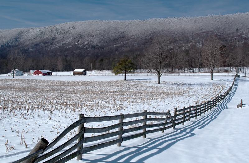 Snowy Shadows<br /> Snowy Shadows, Black Valley, Bedford County, PA
