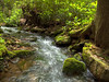 Detwiler Run<br /> Detwiler Run Alan Seeger Natural Area Huntingdon Co., PA