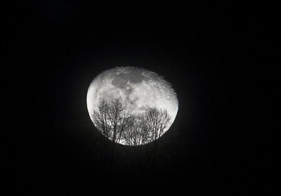 Moonrise over the ridgetop
