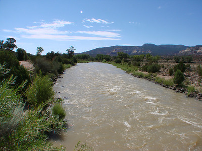 Chama River Canyon Wilderness, Rio Arriba County, New Mexico   http://www.recreation.gov/recAreaDetails.do?contractCode=NRSO&recAreaId=12971&agencyCode=131