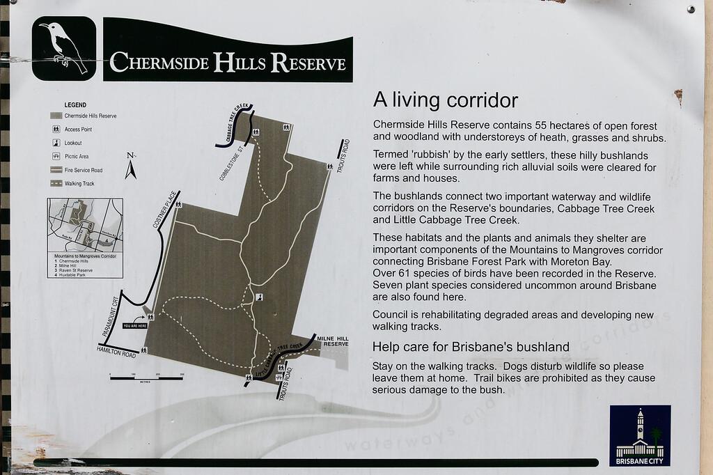 """Chermside Hills Reserve reconnoitre, Brisbane, Queensland, Australia; Wednesday 12 October 2016. Photos by Des Thureson - <a href=""""http://disci.smugmug.com"""">http://disci.smugmug.com</a>"""