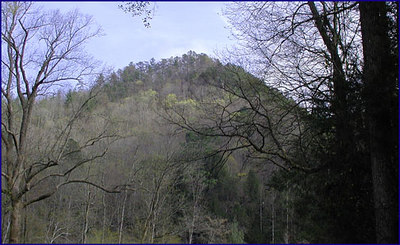 Meigs Mountain viewed from The Wye March 2007 GSMNP